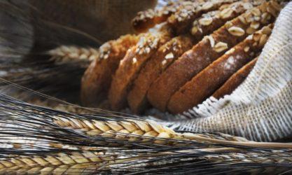 bread wheat whole grains