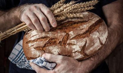 bread whole grain
