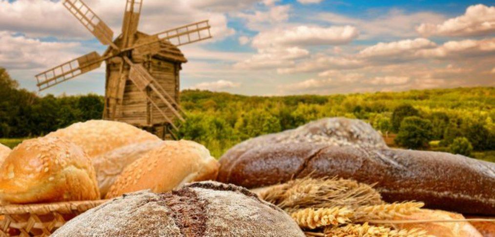 windmill bread dutch