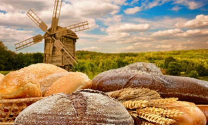 windmill bread dutch